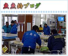 魚魚鈴ブログ